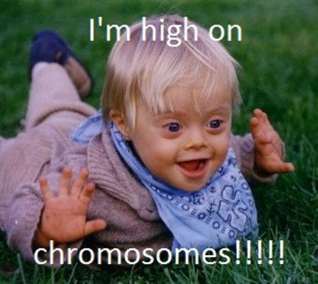 chromosomes high humor im_going_to_hell macro // 320x286 // 31.4KB