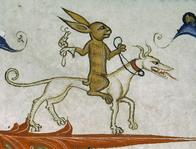 dog medieval rabbit wtf // 1280x973 // 481.5KB