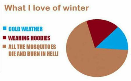 chart humor pie_chart winter // 600x373 // 18.8KB