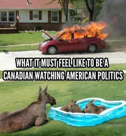 america canada fire moose photo political pool van // 642x690 // 77.5KB