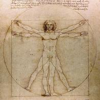 circled diagram leonardo_da_vinci man squared // 936x936 // 388.3KB