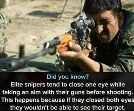 how_to humor rifle sniper // 720x595 // 581.5KB