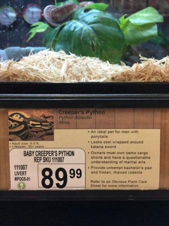 humor pet_shop photo python sign snake // 600x800 // 71.1KB