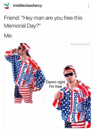 america beer flag freedom humor memorial_day sunglasses // 720x986 // 569.3KB
