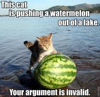 argument_is_invalid cat lake macro watermelon // 500x485 // 57.0KB