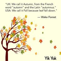 america autumn fall quote uk yik_yak // 526x526 // 176.7KB