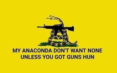 flag gadsen humor rifle sir_mix-a-lot snake // 480x300 // 8.7KB
