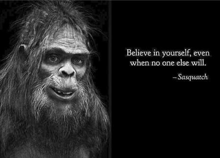 bw humor quote sasquatch // 720x518 // 120.2KB