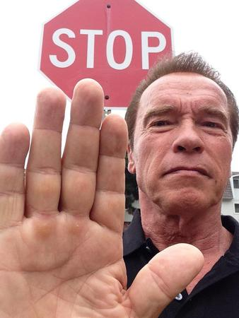 photo reaction schwarzenegger stop // 600x800 // 78.7KB