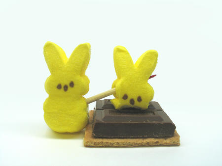 chocolate cracker graham peeps photo smore // 1152x864 // 382.1KB