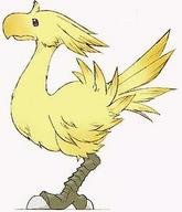 chocobo final_fantasy // 254x295 // 13.1KB