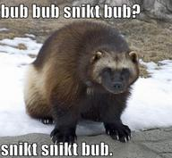 bub macro marvel snikt snow wolverine x-men // 499x460 // 98.8KB