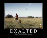 cricket exalted jet motivational // 750x600 // 77.8KB