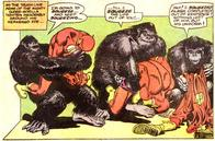 comic dc flash gorilla hug // 531x350 // 127.2KB