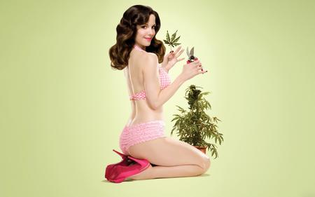 brunette desktop high_heels pantsu pinup pot weeds // 1920x1200 // 111.7KB