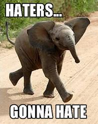 elephant haters macro // 357x450 // 142.6KB