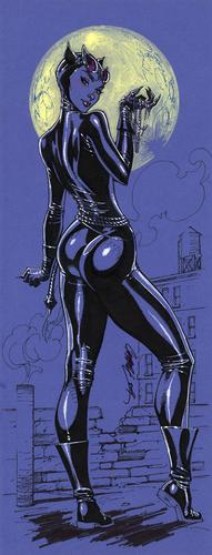 boots catwoman dc goggles moon scott_campbell whip // 600x1570 // 282.2KB