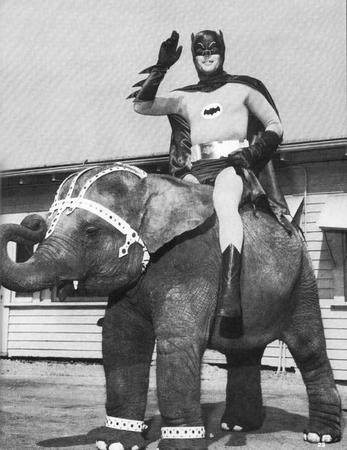 batman bw dc elephant // 612x793 // 63.4KB