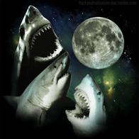 moon shark three_shark_moon // 400x399 // 41.2KB