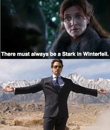 catelyn_stark composite humor iron_man screenshot song_of_ice_and_fire tony_stark // 497x584 // 90.4KB