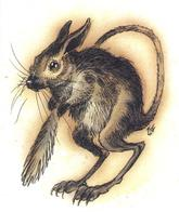 dnd kangaroo_mouse mouse tail tony_diterlizzi // 497x591 // 241.6KB