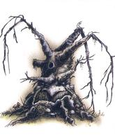 dnd tony_diterlizzi tree // 497x591 // 304.9KB