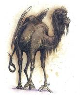 camel dnd tony_diterlizzi wings // 497x591 // 348.0KB