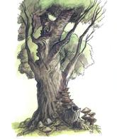 dnd tony_diterlizzi tree // 497x591 // 355.3KB