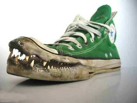 alligator converse photo shoe teeth // 500x375 // 68.2KB