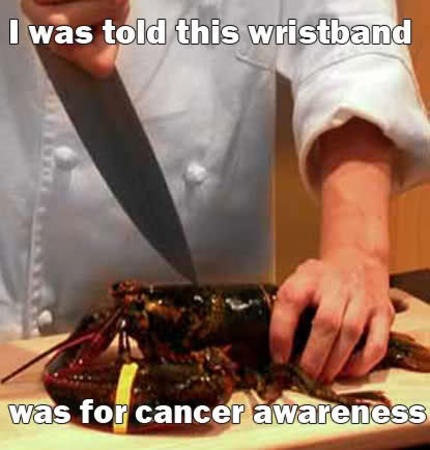 cancer humor knife lobster macro photo // 415x434 // 29.1KB