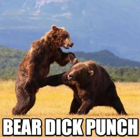 bear dick macro photo punch // 520x506 // 44.1KB
