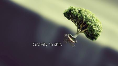 desktop gravity humor tree // 1600x896 // 88.4KB