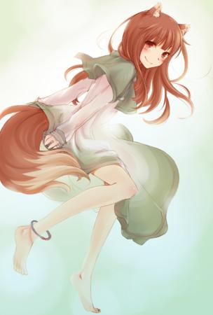 barefoot dress fox_ears horo long_hair shawl spice_and_wolf tail // 1181x1748 // 1.5MB