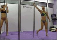 animated dancing pole_dancing // 370x259 // 2.0MB