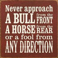advice bull fool horse macro // 500x500 // 58.1KB