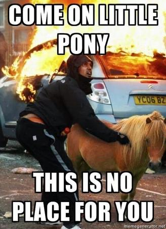 fire macro photo pony reaction // 500x687 // 67.4KB