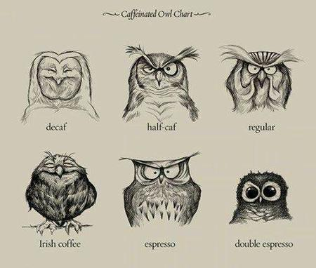 bw coffee composite owl // 500x424 // 32.0KB