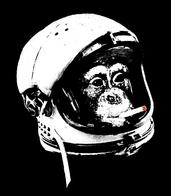 chimpanzee cigarette helmet spacesuit // 583x667 // 74.2KB