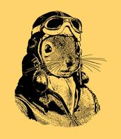 goggles helmet jacket pilot squirrel // 583x667 // 111.4KB