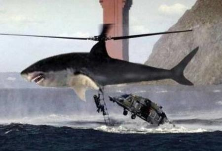 helicopter humor shark // 500x339 // 20.2KB