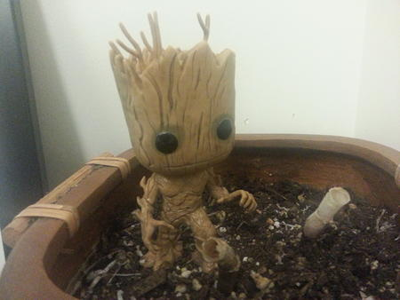 bobble_head groot guardians_of_the_galaxy marvel photo // 3264x2448 // 2.7MB