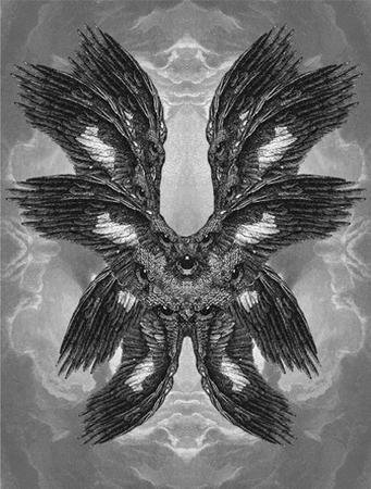 angel bw creepy wings // 400x528 // 81.2KB