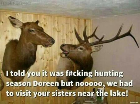 deer humor macro photo // 600x444 // 37.8KB