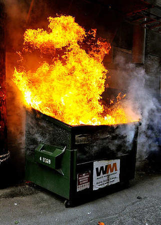 dumpster dumpster_fire fire photo reaction // 358x500 // 36.8KB
