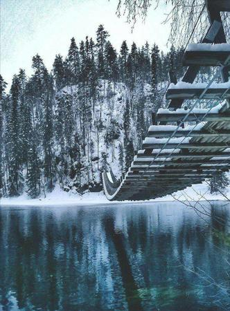 bridge forest photo scenery snow // 600x813 // 132.2KB