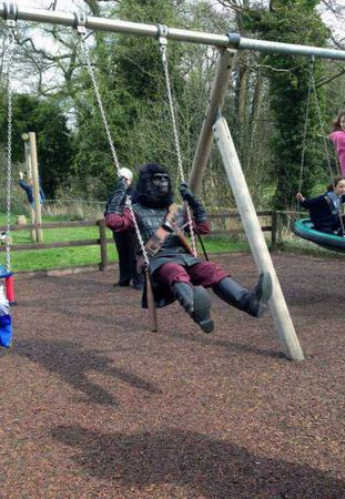 gorilla photo planet_of_the_apes swings // 600x869 // 110.3KB
