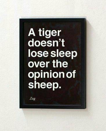 bw motivational quote sheep tiger // 600x740 // 50.9KB