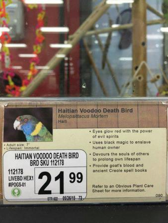 humor parrot pet_shop photo sign voodoo // 600x800 // 66.6KB