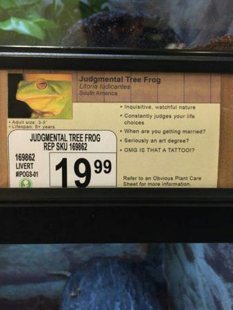 frog humor pet_shop photo sign // 600x800 // 56.5KB