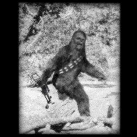 bigfoot bw chewbacca humor photo star_wars // 550x550 // 55.7KB